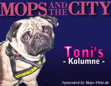 Mops-and-the-City